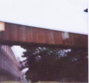 2003070800.jpg